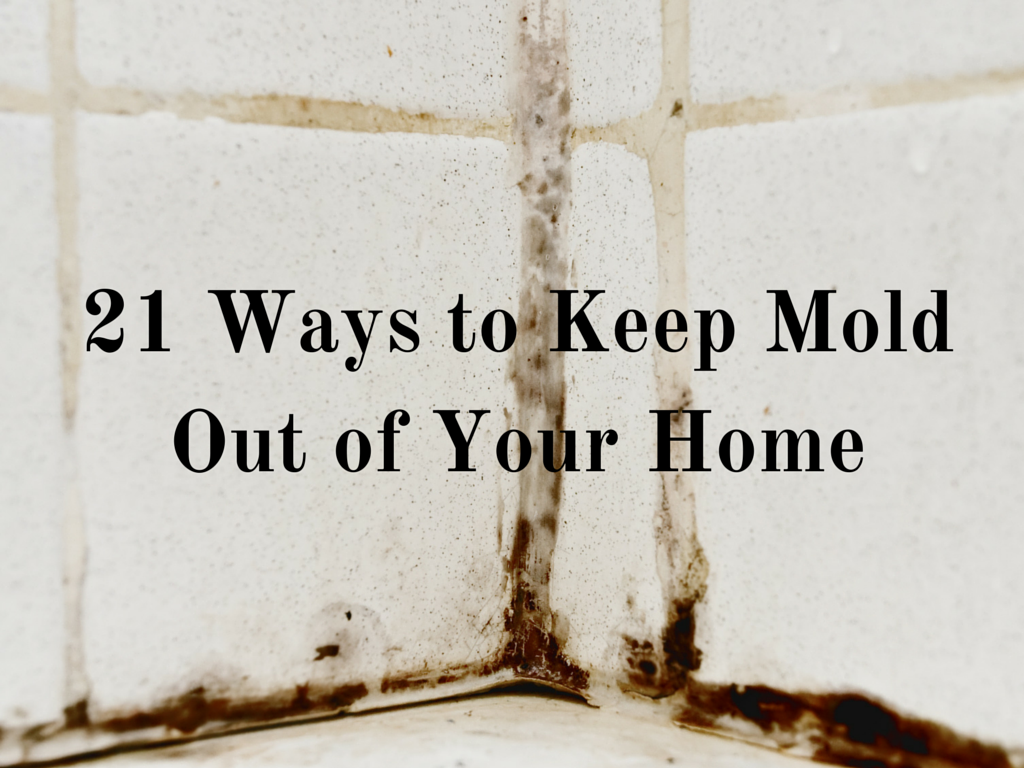 21 Ways to Keep Mold Out of Your Home