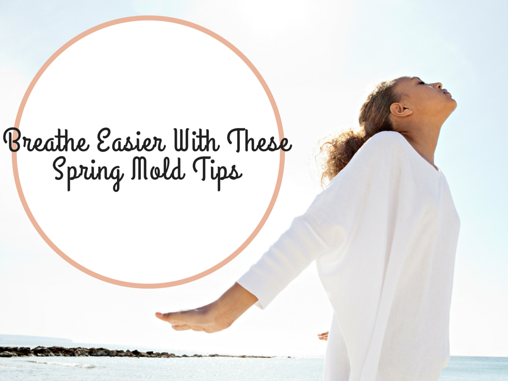 Breathe Easier With These Spring Mold Tips