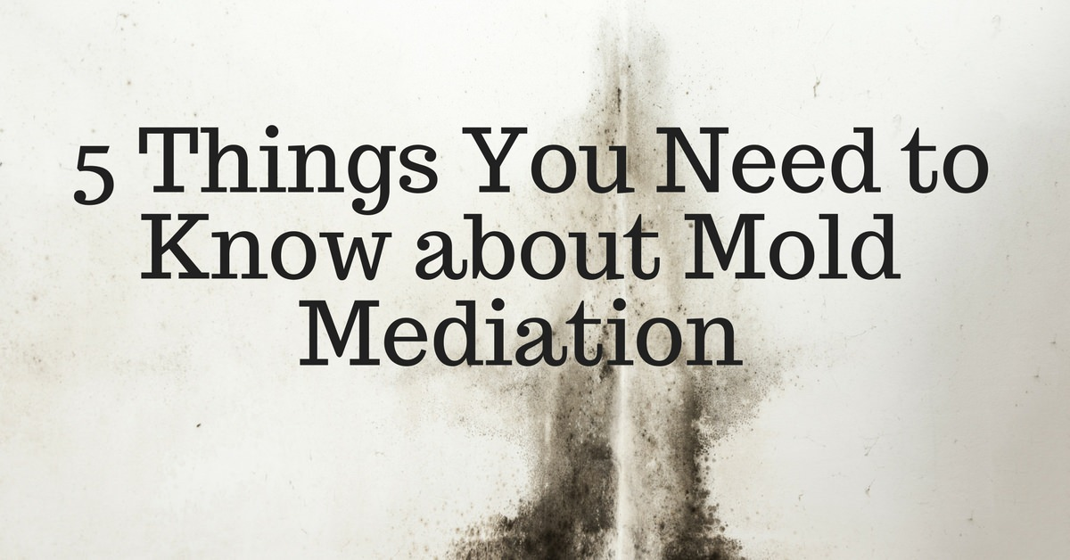 Mold Mediation Tips