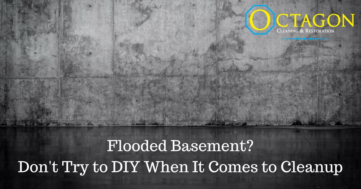 Flooded Basement? Don't Try to DIY When It Comes to Cleanup