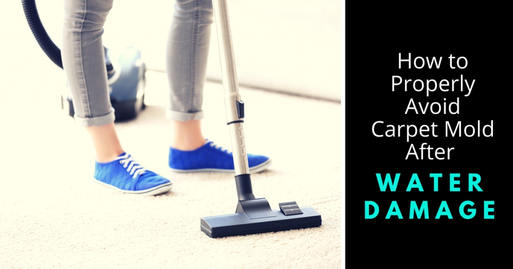 Avoid Carpet Mold After Water Damage