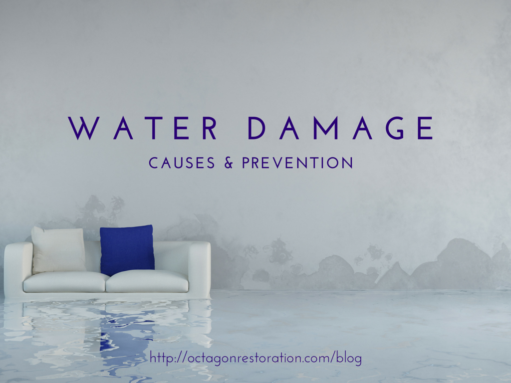 5 Things Every Homeowner Should Know About Water Damage