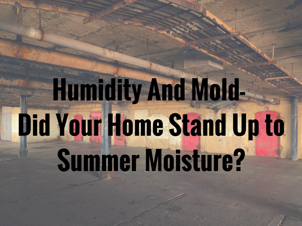 Humidity and Mold in Home