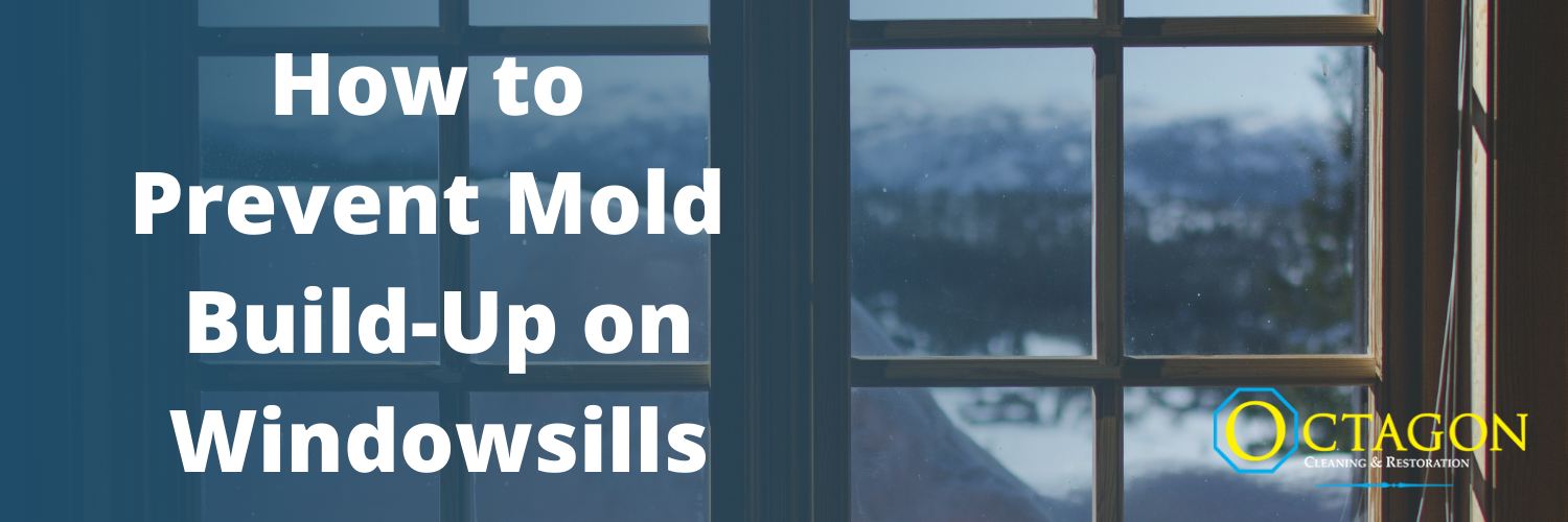 How to Prevent Mold Build-Up on Windowsills