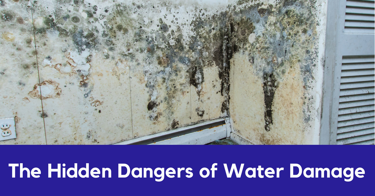 The Hidden Dangers of Water Damage