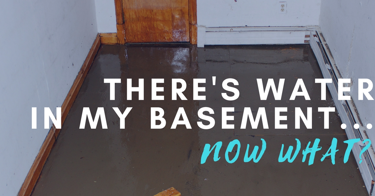 There's Water in my Basement, Now What?