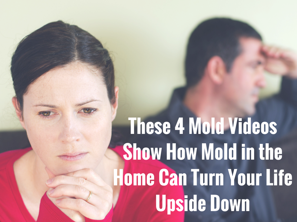 These 4 Mold Videos Show How Mold in the Home Can Turn Your Life Upside Down
