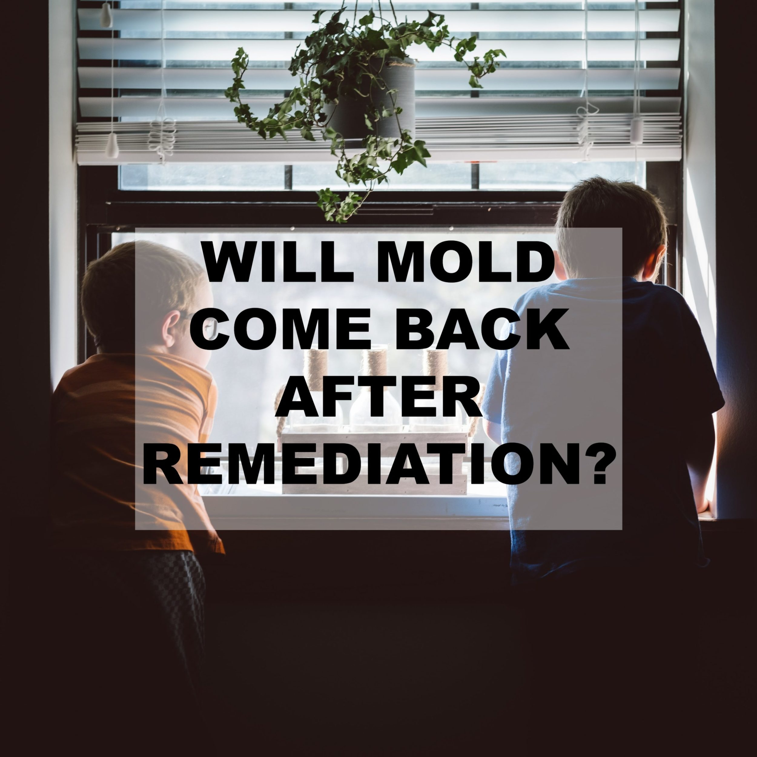Will mold come back after remediation