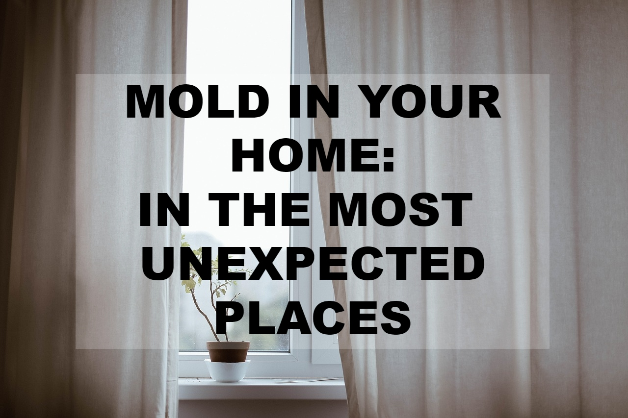 Mold in Your Home: In the Most Unexpected Places