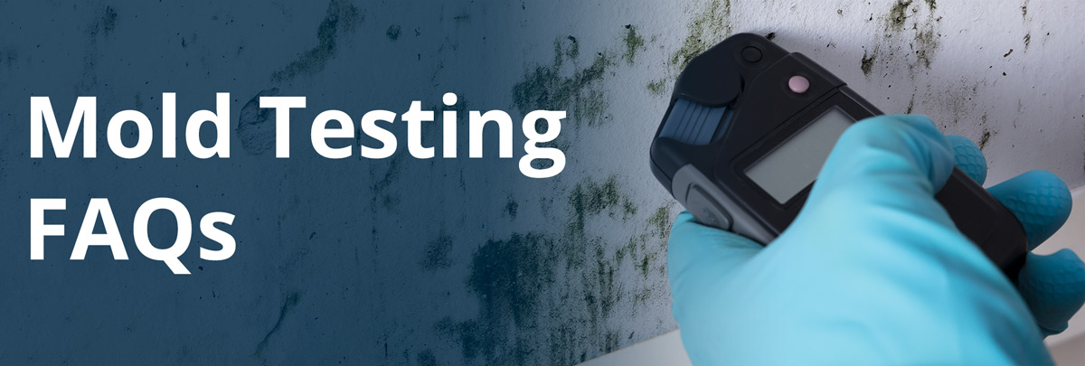 Frequently Asked Questions About Mold and Mold Testing