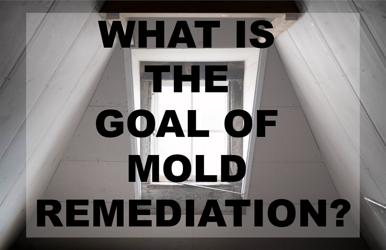 What is the Goal of Mold Remediation?